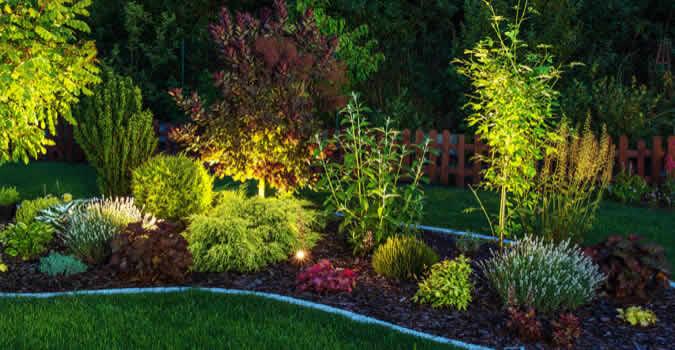 Landscape lighting miami fl chop chop landscaping miami fl backyard designs aloadofball Gallery